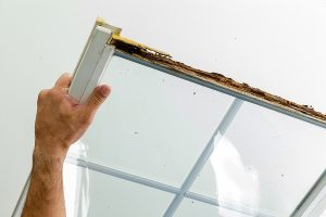 Window Damaged By Wet Rot In The Wooden Frame