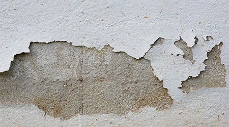 Even Clean, Freshly Painted Walls Can Have High Levels Of Moisture, As  Measured By A Moisture Metre, Often Indicating That There Is A Fundamental  Issue With ...